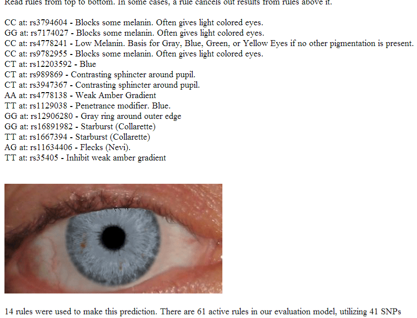 The Dna Of Eye Color Its Complicated Kitty Coopers Blog