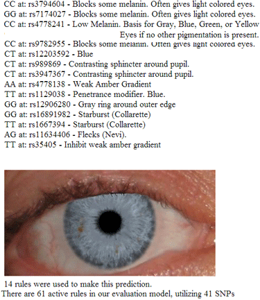 GEDmatch eye color prediction for me