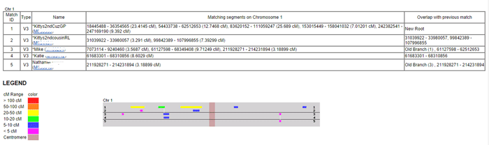 Gedmatch Chromosome Browser