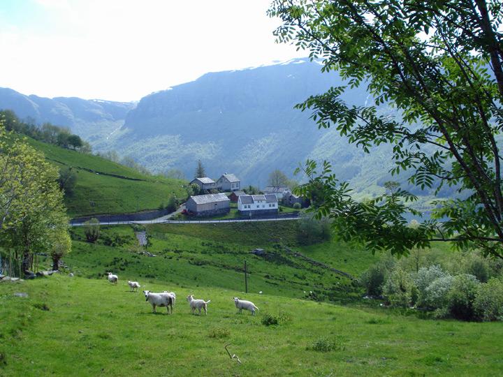 Lower Haaland Farm from Upper (Corinne's ancestors)