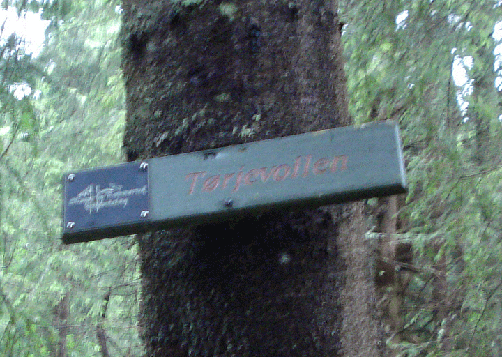 Tørjevollen sign by the ruins