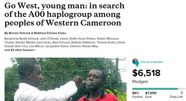 Finding A00 in Cameroon